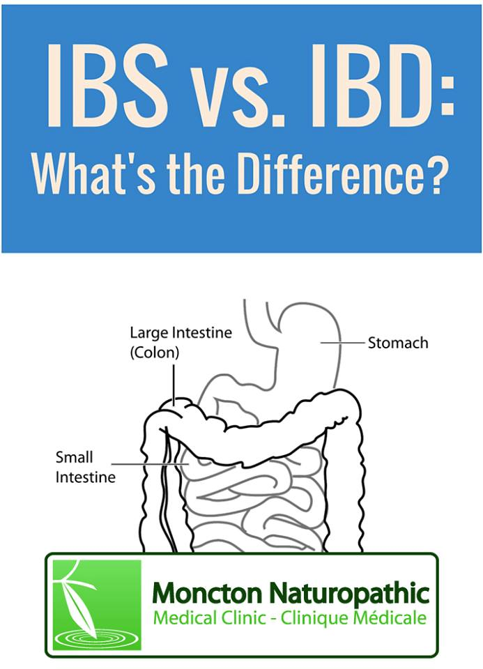 Digestive Health Ibs And Ibd Different Conditions Along The Same Spectrum Moncton Naturopathic Medical Clinic